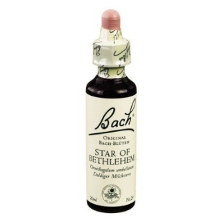 Original Bachblüten Essenz Star of Bethlehem, 20 ml