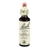 Original Bachblüten Essenz Red Chestnut, 20 ml
