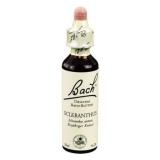 Original Bachblüten Essenz Scleranthus, 20 ml