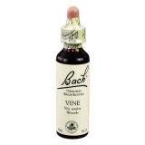 Original Bachblüten Essenz Vine, 20 ml